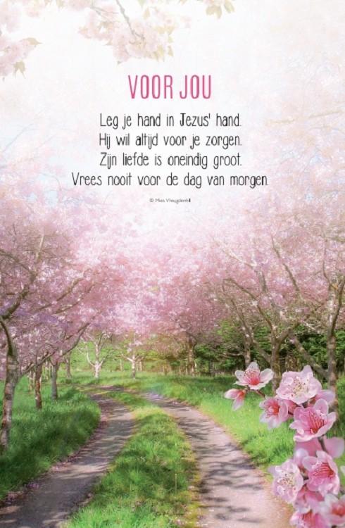 Wonderbaarlijk 25 jaar getrouwd - 25 jaar getrouwd - Baaij Light Cards Webshop XK-33